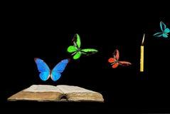 Varicoloured butterflies Stock Image