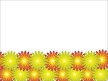 varicoloured ljusa flowerses Arkivbild