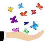 Varicoloured Schmetterlinge auf einer Hand lizenzfreie abbildung