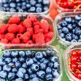 Varie bacche da un mercato locale dell'agricoltore Alimento locale sano Fotografie Stock Libere da Diritti
