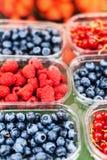 Varie bacche da un mercato locale dell'agricoltore Alimento locale sano Fotografia Stock Libera da Diritti