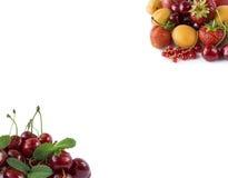 Varie bacche fresche di estate Fragole, ribes, albicocche, nettarine e ciliege maturi su fondo bianco Immagine Stock