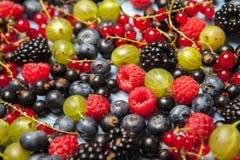 Varie bacche fresche di estate Vista superiore Bacche del dessert dell'alimento di colore della frutta del preparato delle bacche Fotografie Stock