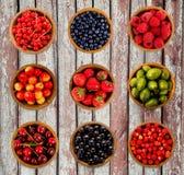 Varie bacche rassodate Fragole, ribes, ciliegia, lamponi, uva spina e mirtillo Immagini Stock