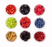 Varie bacche rassodate Fragole, uva passa, lamponi, uva, melograni, mirtilli e more Immagini Stock Libere da Diritti