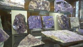 Varie collezioni di pietre minerali alla mostra nel museo Museo dei minerali Fotografia Stock Libera da Diritti