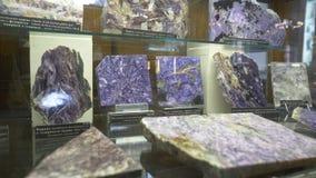 Varie collezioni di pietre minerali alla mostra nel museo Museo dei minerali Fotografia Stock