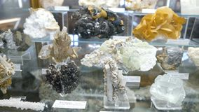 Varie collezioni di pietre minerali alla mostra nel museo Museo dei minerali Immagine Stock Libera da Diritti