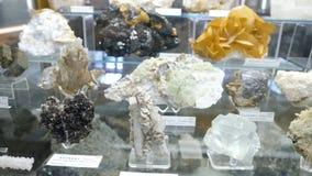 Varie collezioni di pietre minerali alla mostra nel museo Museo dei minerali Immagine Stock