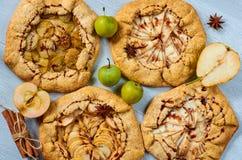 Varie crostate di frutti con la guarnizione del cioccolato sui precedenti concreti grigi Dessert sano vegetariano di autunno - ga fotografia stock
