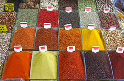 Varie erbe e spezie Fotografia Stock