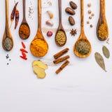 Varie erbe e spezie in cucchiai di legno Disposizione piana delle spezie dentro Fotografie Stock Libere da Diritti