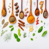 Varie erbe e spezie in cucchiai di legno Disposizione piana delle spezie dentro Fotografia Stock