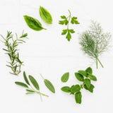 Varie erbe fresche dalla menta piperita del giardino, basilico, ro Fotografia Stock