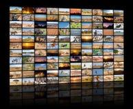 Varie immagini dei paesaggi e degli animali africani come grande parete di immagine Fotografia Stock