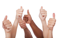 Varie mani che mostrano i pollici su Immagini Stock