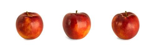 Varie mele rosse mature dal backgrou bianco di sopra di Jonagored Fotografie Stock Libere da Diritti