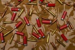 Varie munizioni fotografia stock libera da diritti