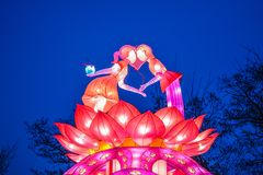 Varie piccole lampade cinesi luminose nel parco garland Una decorazione insolita per le vie e la casa Umore festivo immagine stock