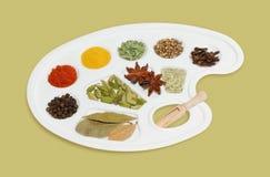 Varie spezie aromatiche Immagine Stock Libera da Diritti