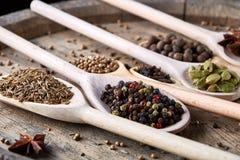Varie spezie aromatiche Colourful per la cottura sul bordo di legno vecchio, primo piano, disposizione del piano, fuoco selettivo Immagini Stock Libere da Diritti