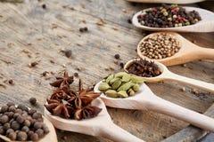 Varie spezie aromatiche Colourful per la cottura sul bordo di legno vecchio, primo piano, disposizione del piano, profondità di c Immagine Stock Libera da Diritti