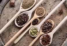 Varie spezie aromatiche Colourful per la cottura sul bordo di legno vecchio, primo piano, disposizione del piano, profondità di c Immagini Stock
