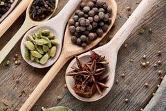 Varie spezie aromatiche Colourful per la cottura sul bordo di legno vecchio, primo piano, disposizione del piano, profondità di c Fotografia Stock