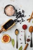 Varie spezie ed erbe indiane variopinte in cucchiai d'argento su fondo bianco Immagine Stock Libera da Diritti