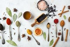 Varie spezie ed erbe indiane variopinte in cucchiai d'argento su fondo bianco Fotografie Stock