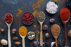Varie spezie indiane in cucchiai e ciotole e dadi di legno del metallo sulla tavola di pietra scura Spezie variopinte, vista supe Immagini Stock Libere da Diritti