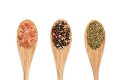 Varie spezie sui cucchiai di legno Fotografia Stock Libera da Diritti