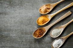 Varie spezie sui cucchiai di legno Fotografia Stock