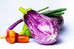 Varie verdure su fondo bianco Le verdure orizzontali di vista hanno colorato parecchi colori Vegano organico o alimento vegetaria fotografie stock