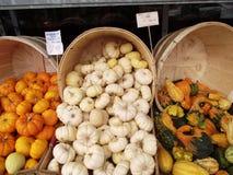 Varie zucche in cestini Fotografia Stock Libera da Diritti