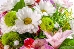 A varied bouquet of flowers. Isolated. Royalty Free Stock Photo