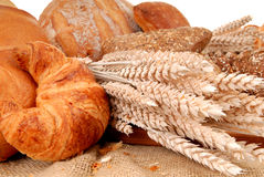 Varied bread display Stock Images