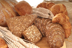 Varied bread display Stock Image