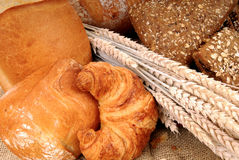 Varied bread display Royalty Free Stock Image