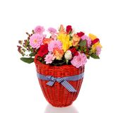 Varied colorful bouquet flowers Stock Images
