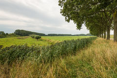 Varied Dutch landscape on a cloudy summer day Stock Images