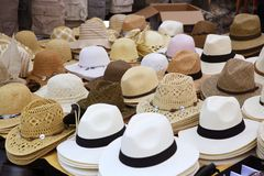 Varied fashion hats showcase shop Stock Photography