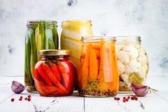 Variedad adobada de las salmueras que preserva los tarros Habas verdes hechas en casa, calabaza, coliflor, zanahorias, salmueras  foto de archivo libre de regalías