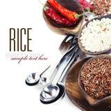 Variedad de arroz Fotografía de archivo libre de regalías