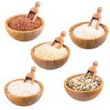Variedad de arroz Fotos de archivo libres de regalías