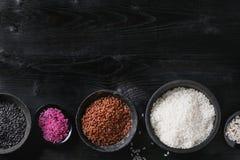 Variedad de arroz colorido Fotos de archivo libres de regalías