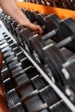 Variedad de barbells en club de deporte Foto de archivo