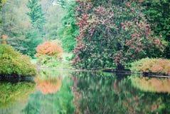 Variedad de colores que reflejan en el lago Marmo en la caída en Morton Arboretum imagenes de archivo