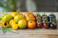 Variedad de diversos tomates raros Imagenes de archivo
