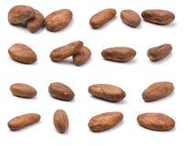 Variedad de granos de cacao imagen de archivo libre de regalías